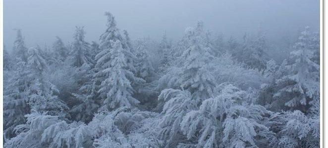 Zimowe obrazy